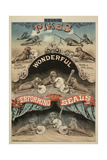 George Pike's Performing Seals Giclée-tryk af Henry Evanion
