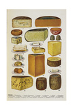 Cheese Giclee Print by Isabella Beeton