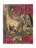 Letters D, E, F and G. D For Dove. E For Elephant. F For Fox and Fowls. G For Giraffe Giclee Print