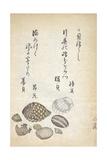 Shellfish Giclee Print by Katsuma Ryusai