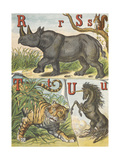Letters R, S, T and U. R For Rhinoceros, S For Squirrel, T For Tiger and U For Unicorn Giclee Print by Ernest Griset
