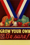 Grow Your Own Be Sure Safe Food WWII War Propaganda Poster Posters