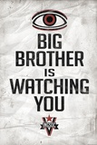 Big Brother is Watching You 1984 INGSOC Political Prints