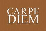 Carpe Diem (Seize the Day, Latin Origin) Poster Prints