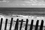 Beach Dunes Fence in Hamptons Black White Photo