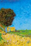 Vincent van Gogh A Lane near Arles Poster Prints by Vincent van Gogh