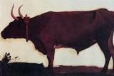 Albert Bierstadt Ox Portrait Posters by Albert Beirstadt
