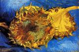 Vincent van Gogh Two Cut Sunflowers 3 Poster Prints by Vincent van Gogh
