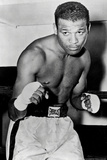 Sugar Ray Robinson Boxing Pose Sports Poster Photo