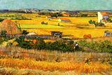 Vincent van Gogh Harvest at La Crau with Montmajour in the Background Poster Prints by Vincent van Gogh