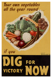 Dig for Victory - WWII War Propaganda Poster Posters