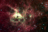 Tarantula Nebula Space Photo