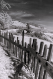 Scene at Fort Ross, Infrared Photographic Print by Vincent James