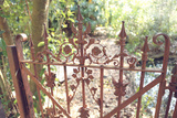 Vintage 1920s Fancy Iron Gate Closed Photographic Print by Jena Ardell