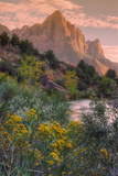 Days End from the Pa' Rus Trail, Zion Fotografisk tryk af Vincent James