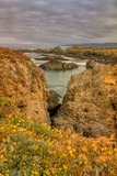 Sea Ranch Seascape Photographic Print by Vincent James