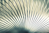 Metal Slinky No. 2 Photographic Print by Andrew Bell