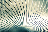 Metal Slinky No. 2 Photographic Print by Andy Bell