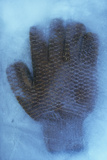 Heavy-duty Industrial Glove with Rubber Grip in Ice Block Photographic Print by Den Reader