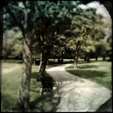 Pathway in a Park Photographic Print by Craig Roberts