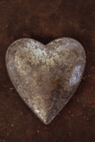 Silver Heart Photographic Print by Den Reader