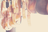 The Violin Fotografie-Druck von Laura Evans