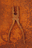 Rusty Old Pliers Lying Half-open On Rusty Metal Sheet Photographic Print by Den Reader