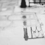 Spiegelungen – 11x14 Fotografie-Druck von Laura Evans
