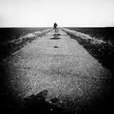 Hitch Hiker Photographic Print by Rory Garforth