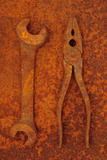Rusty Old Double-headed Spanner Lying Next To Rusty Pliers On Rusty Metal Sheet Photographic Print by Den Reader