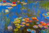 Claude Monet Waterlillies Poster Poster by Claude Monet