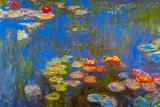 Claude Monet Waterlillies Poster Poster by Claude Monet