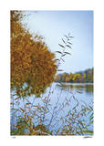 Autumn River 2 Limited Edition by Donald Satterlee