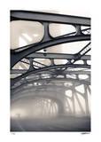 Morgendlicher Nebel Limitierte Auflage von Donald Satterlee