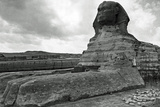 The Great Sphinx Poster Prints