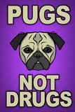 Pugs Not Drugs Humor Poster Print