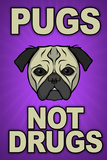 Pugs Not Drugs Humor Poster