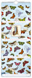 Bellini - Butterflies - Perpetual Birthday Calendar Calendars