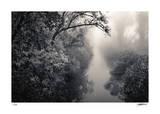 Mystical Slough Giclée-tryk af Donald Satterlee