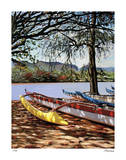 Kauai Shadows Giclee Print by Tom Swimm