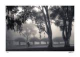 Foggy Commute Limitierte Auflage von Donald Satterlee