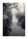 Misty Solitude Giclée-tryk af Donald Satterlee