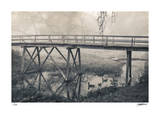 Napa Creek Giclee Print by Donald Satterlee