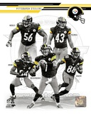 Pittsburgh Steelers 2013 Team Composite Photo