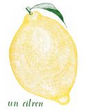 Un Citron Letterpress Print by Eva Jorgensen