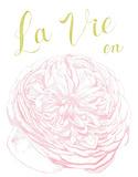 La Vie en Rose Letterpress Print by Eva Jorgensen