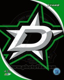 Dallas Stars 2013 Team Logo Photo