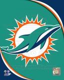 Miami Dolphins 2013 Logo Photo