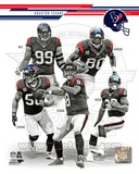 Houston Texans 2013 Team Composite Photo