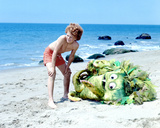 Sigmund and the Sea Monsters Photo